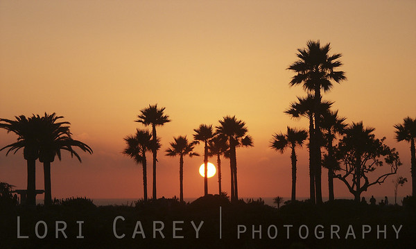 Sunset viewed from the grounds of the Montage Resort in Laguna Beach, California