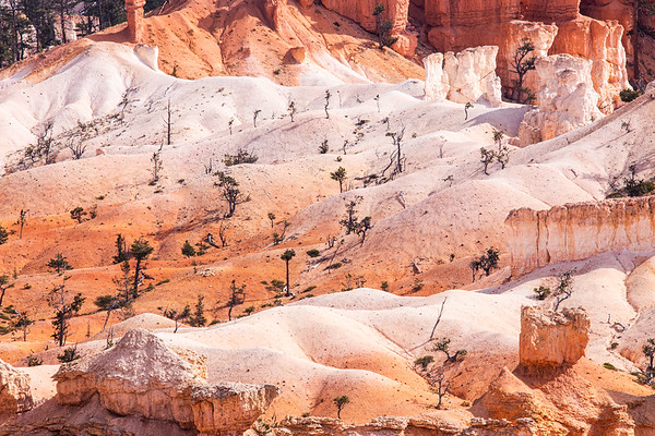 Bryce Canyon National Park, Claron Formation, Garfield County, Utah