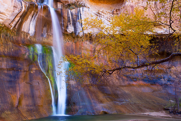 Lower Calf Creek Falls with autumn leaves, Escalante / Grand Staircase National Monument, Garfield County, Utah