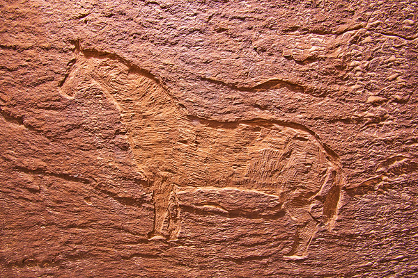 Historic cowboy horse carving, Molen Reef, Utah