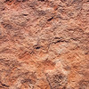 Dinosaur track, Navajo Sandstone, Navajo Nation, Coconino County, Arizona