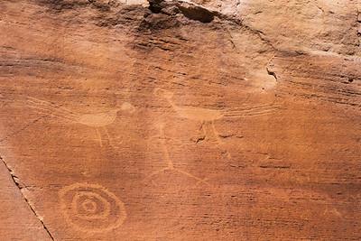 Ancestral Puebloan petroglyph macaws, San Juan County, Utah