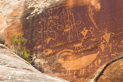 Basketmaker petroglyph panel with atlatls, Utah