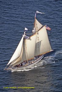 """Harvey Gamage"" Great Chesapeake Bay Schooner Race, October 2000, Image #S1281"