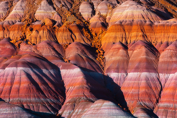 The Multitude Of Rainbow Colors Within The Paria Hills - Paria Ghost Town, Painted Hills, Grand Staircase-Escalante National Monument, Utah