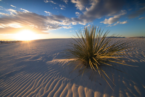 A Burst Of Light Cresting The Surface - White Sands National Monument, New Mexico