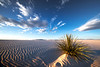 Morning Light On The Sand Ripples - White Sands National Monument, New Mexico