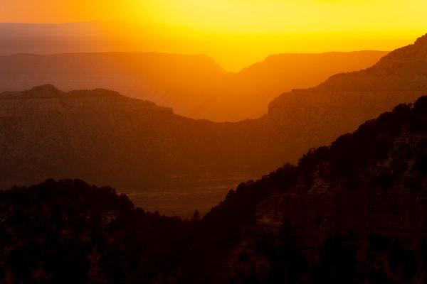 The Magic And Glow Of Magic Light Locus Point, Rainbow Rim Trail, North Rim, Grand Canyon National Park, Arizona