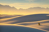 A Touch Of Gold Within The Dunes - White Sands National Monument, New Mexico