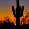 American Southwest 40