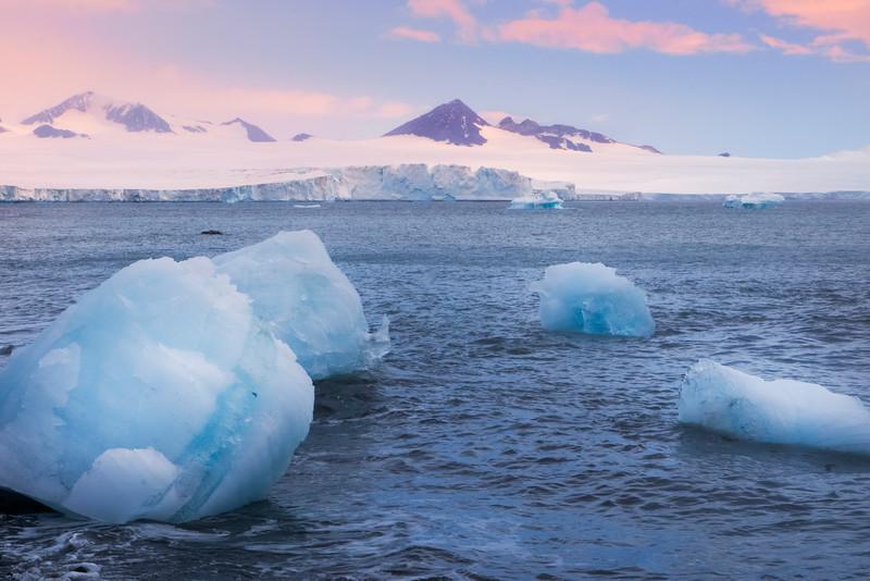 Icebergs Floating Near Shore At Brown Bluff - Brown Bluff, Tabarin Peninsula,  Northern Antarctica