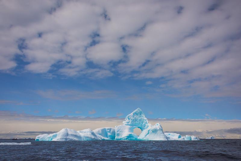 Owner -  Cuverville Island, Antarctica