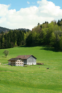 Alpine Farmhouse