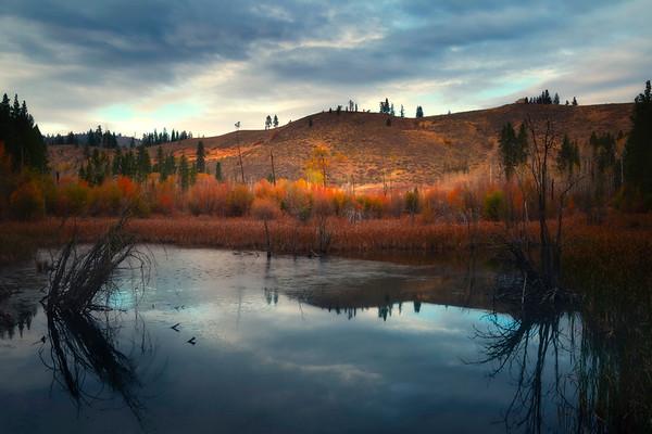 Beaver Pond Autumn Highlights - Methow Valley, Washington State