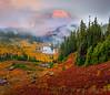 Rolling Fog Off The Top Of Mt Rainier - Upper Tipsoo Lake,  Mount Rainier National Park, Washington