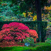 Japanese Gardens, Portland, Oregon_16
