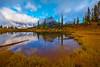 The Circle Of Seasons - Upper Tipsoo Lake,  Mount Rainier National Park, Washington