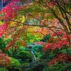 Japanese Gardens, Portland, Oregon_3