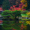 Fall Colors In The Washington Arboretum, Seattle, WA Rainbow Colors Reflected In The Pond - Washington Arboretum, Seattle