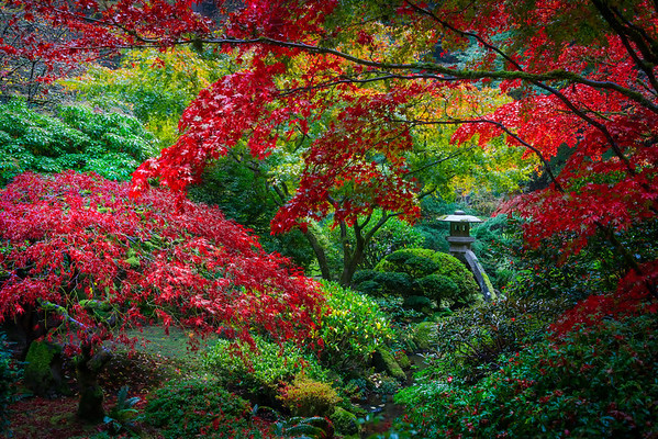 Japanese Gardens, Portland, Oregon_1