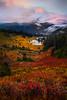 Looking Down At Tipsoo Lake in Autumn - Mount Rainier National Park, Washington