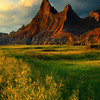 A Row Of Yellow - Badlands National Park, South Dakota