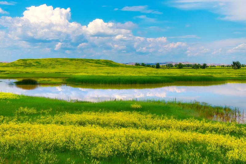 Sweet Clover Reflections - Badlands National Park, South Dakota