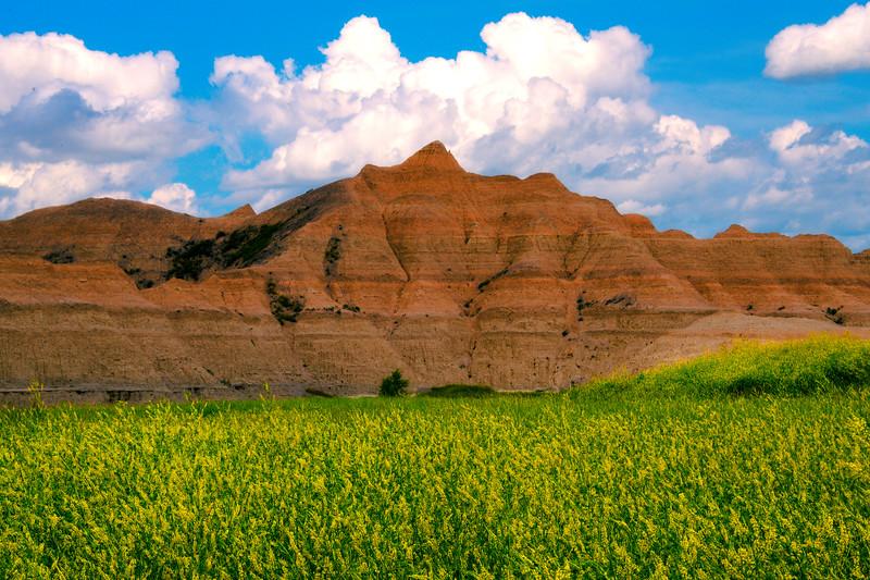 Valley Of Yellow Below The Badlands - Badlands National Park, South Dakota