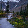 The peaks of Edith Cavell at the height of summer in Jasper National Park