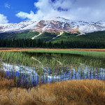 Peaks reflected in ponds along the Icefields Parkway