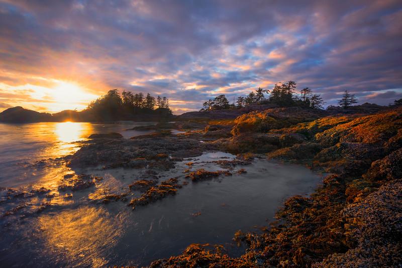 Frank Island Sunset Explosion Chesterman Beach, Tofino,  Vancouver Island, BC, Canada
