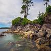 The Leaning Tree On Tonquin Island Tonquin Island, Tofino, Vancouver Island, BC, Canada