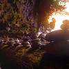 Treasures Inside The Cave Mystic Beach, Juan De Fuca Trail,  Vancouver Island, BC, Canada