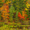Beaver Pond And Fall Colors