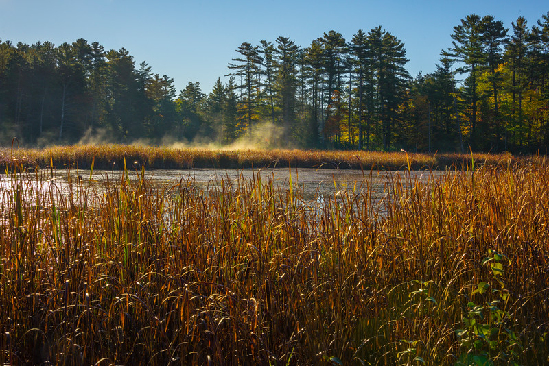 First Morning Mist On The Lake - Algonquin Provincial Park, Nipissing, South Part, Ontario, Canada