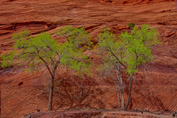 Canyon De Chelly National Monument 5