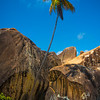 The Boulder Rocks And Palm Tree - The Baths, Virgin Gorda, British Virgin Islands, Caribbean
