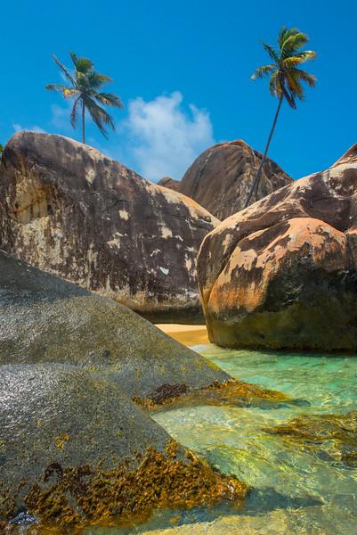 Jutting Rocks And A Palm Tree - The Baths, Virgin Gorda, British Virgin Islands, Caribbean