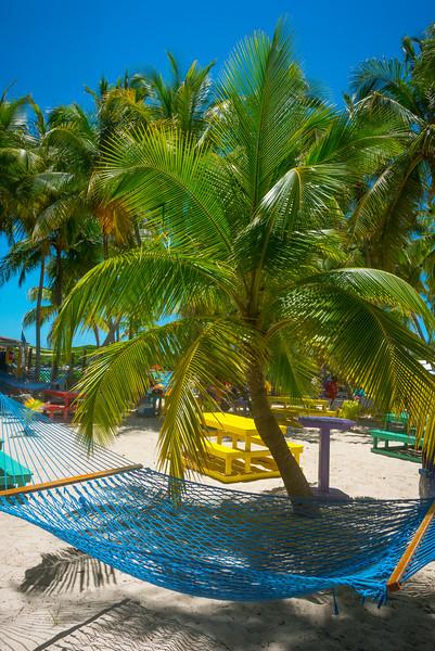 Hammock And The Palm Tree - Salt Kay, Bahamas, Caribbean