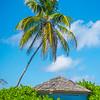 Tucked Away In The Greens - Salt Kay, Bahamas, Caribbean