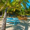A Maze Of Palm Trees And Shadows - Salt Kay, Bahamas, Caribbean