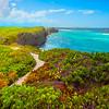 The Vibrant Coastal Foliage On Middle Caicos - Secret Beach, Mudjin Harbor,  Middle Caicos, Turks And Caicos, Caribbean