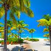 Life On A Tropical Beach - Providenciales, Turks And Caicos, Caribbean