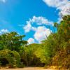 Trail Into The Jungle -  Charlotte Amalie , St. Thomas, US Virgin Islands