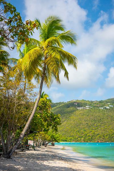 Looking Down Magens Beach -  Charlotte Amalie , St. Thomas, US Virgin Islands