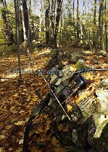A Hunter's Bow