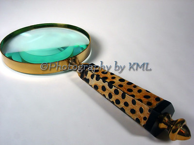 Magnifying Glass with Spotted Handle