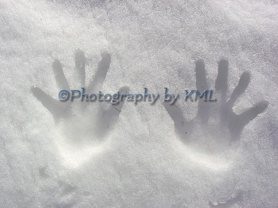 Hands in the Snow