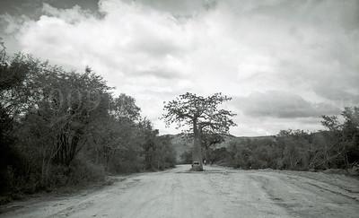 Street Scenes-AFRICA-Angola-2008-0994-27