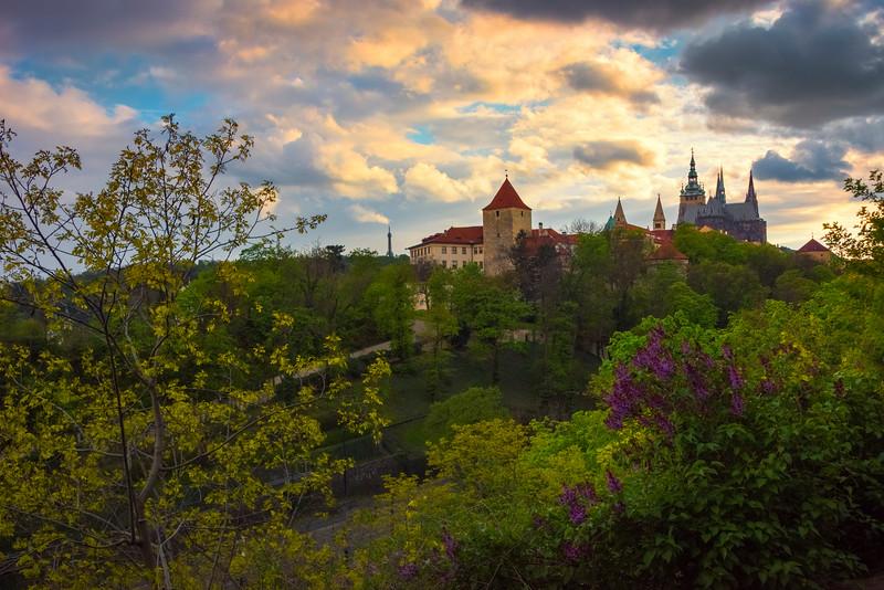 Sunset Reds Highlight Prague Castle